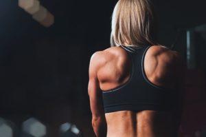 Klimmzug Muskelgruppen